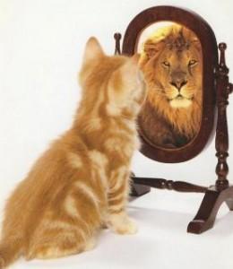Confiance en soi - potentiel-infini-be